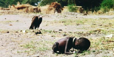 O abutre e a menina